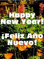 Happy New Year (186x250)